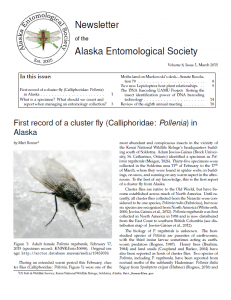 Cover of AKES Newsletter 2015, issue I